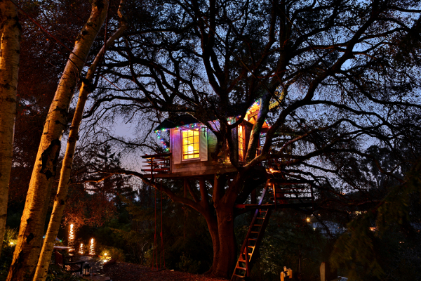 Treehouse at the Sunset time.