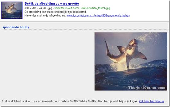 witte haai image stolen