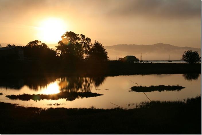 mavericks-surf-early-morning-sunrise