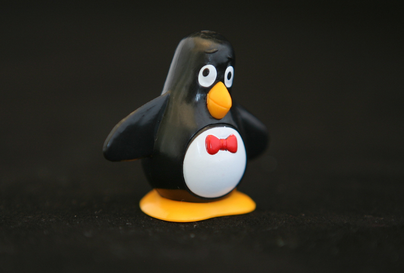 Black & White Penguin with a red bow tie