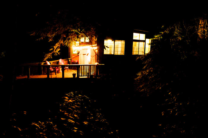 Redwood tree forrest treehouse at night