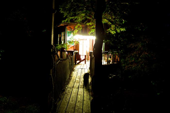 Redwood treehouse on Airbnb entrance bridge at night
