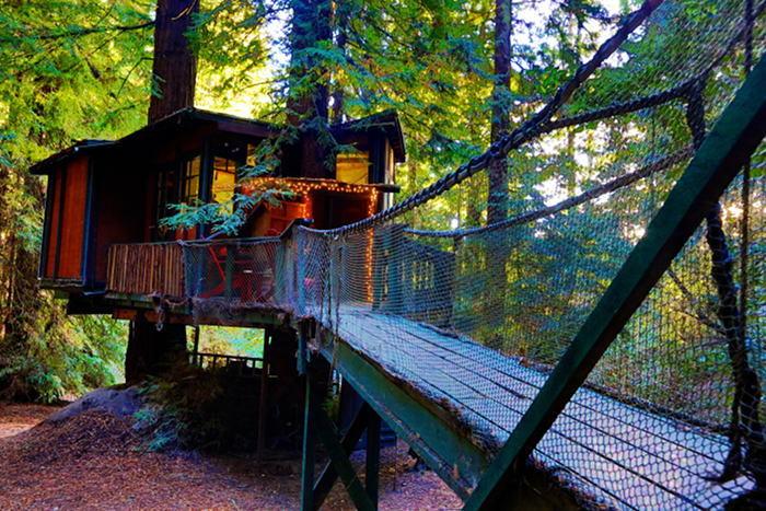 Redwood treehouse on Airbnb entrance
